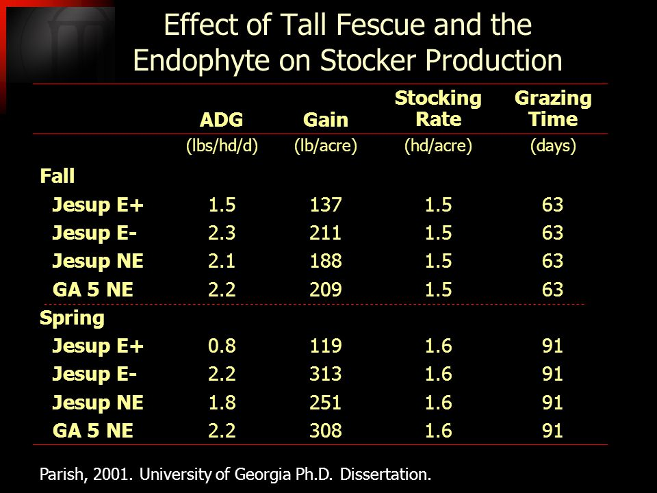 Effect of Tall Fescue and the Endophyte on Stocker Production ADGGain Stocking Rate Grazing Time (lbs/hd/d)(lb/acre)(hd/acre)(days) Fall Jesup E+ 1.51