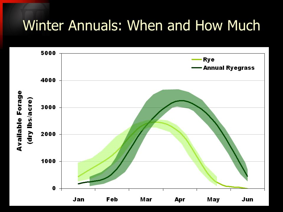 Winter Annuals: When and How Much