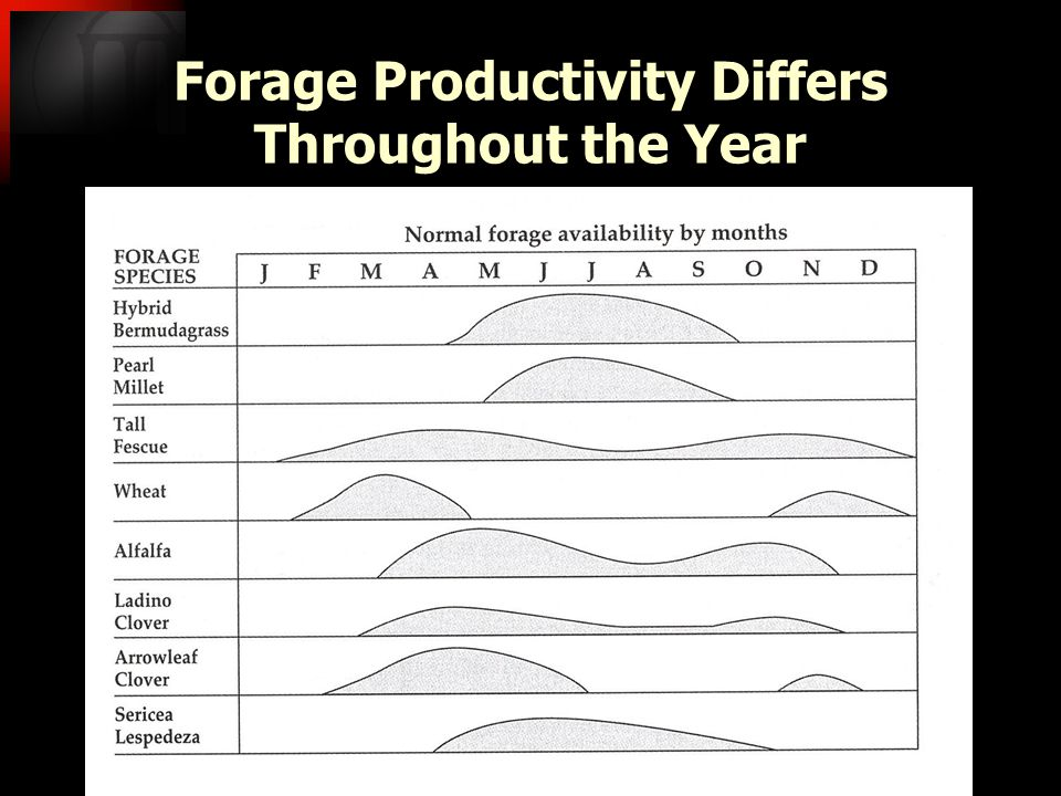 Forage Productivity Differs Throughout the Year