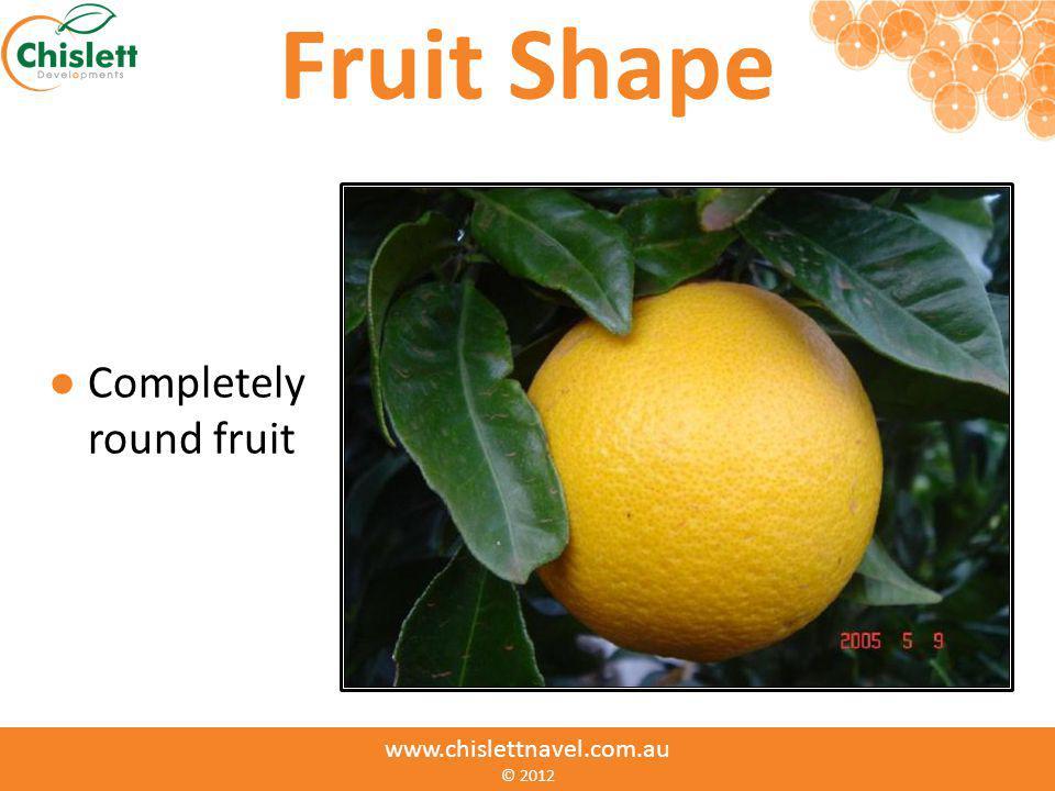 www.chislettnavel.com.au © Fruit Shape Completely round fruit www.chislettnavel.com.au © 2012