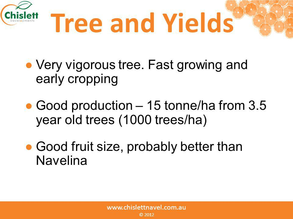 www.chislettnavel.com.au © Tree and Yields Very vigorous tree. Fast growing and early cropping Good production – 15 tonne/ha from 3.5 year old trees (