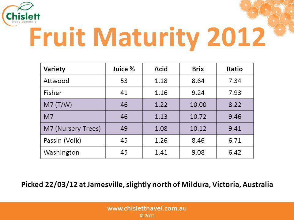 www.chislettnavel.com.au © www.chislettnavel.com.au © 2012 Fruit Maturity 2012 VarietyJuice %AcidBrixRatio Attwood531.188.647.34 Fisher411.169.247.93