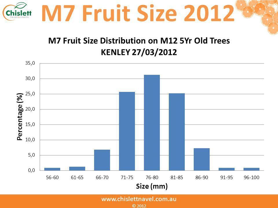 www.chislettnavel.com.au © 2012 M7 Fruit Size 2012