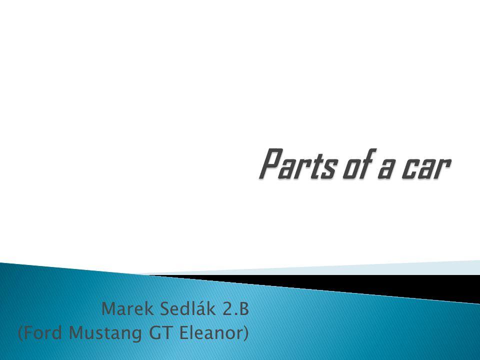 Marek Sedlák 2.B (Ford Mustang GT Eleanor)