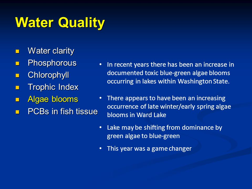 Water clarity Water clarity Phosphorous Phosphorous Chlorophyll Chlorophyll Trophic Index Trophic Index Algae blooms Algae blooms PCBs in fish tissue PCBs in fish tissue In recent years there has been an increase in documented toxic blue-green algae blooms occurring in lakes within Washington State.