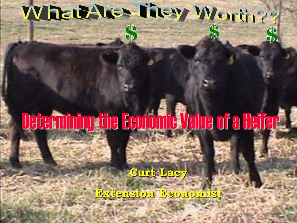 Curt Lacy Extension Economist