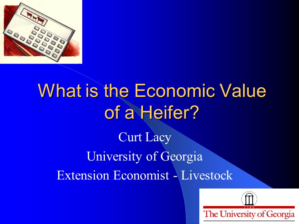 What is the Economic Value of a Heifer.