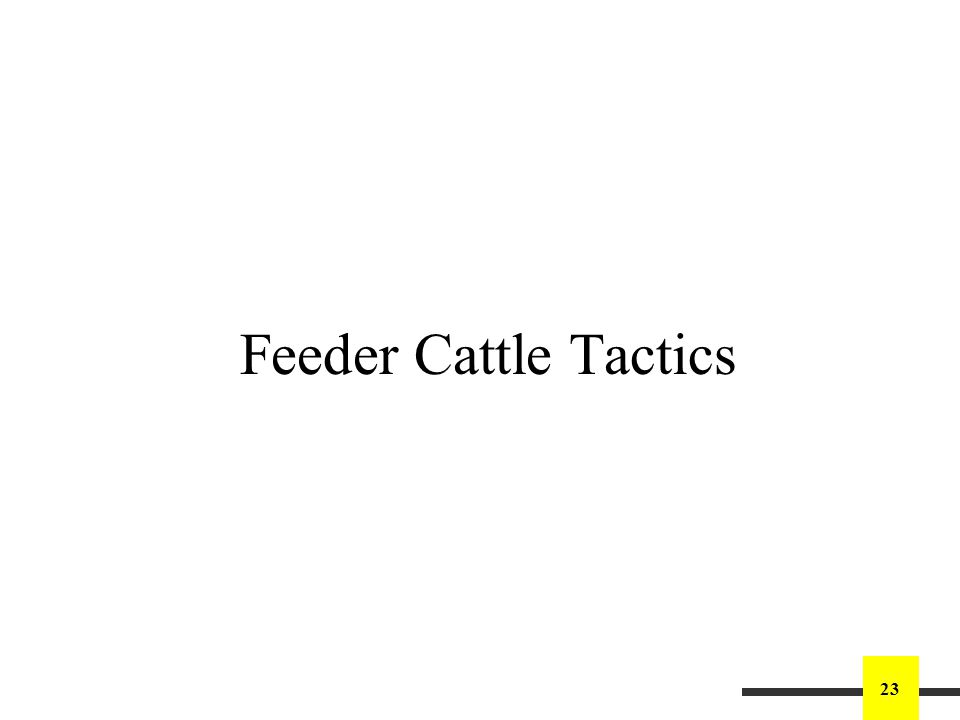 23 Feeder Cattle Tactics