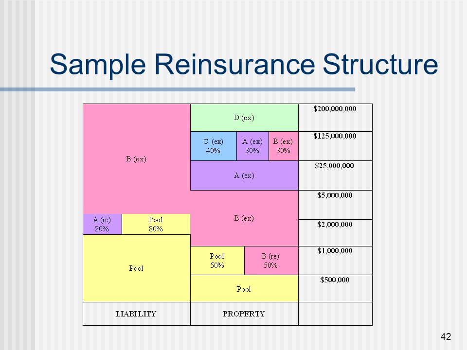42 Sample Reinsurance Structure