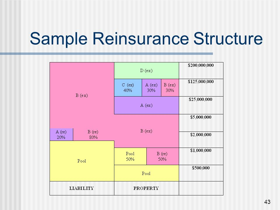 43 Sample Reinsurance Structure