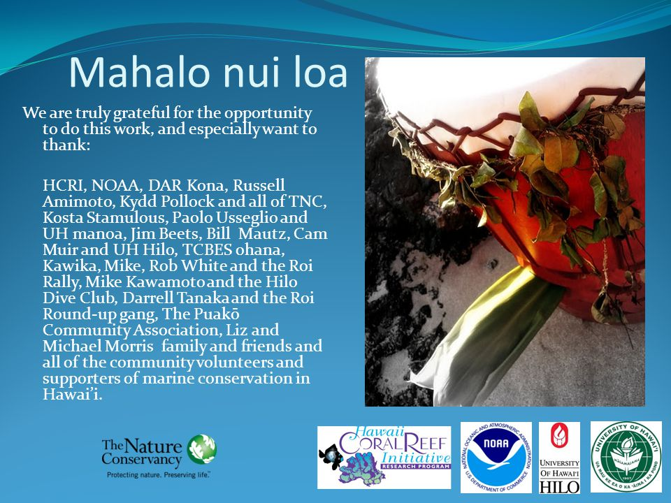 Mahalo nui loa We are truly grateful for the opportunity to do this work, and especially want to thank: HCRI, NOAA, DAR Kona, Russell Amimoto, Kydd Pollock and all of TNC, Kosta Stamulous, Paolo Usseglio and UH manoa, Jim Beets, Bill Mautz, Cam Muir and UH Hilo, TCBES ohana, Kawika, Mike, Rob White and the Roi Rally, Mike Kawamoto and the Hilo Dive Club, Darrell Tanaka and the Roi Round-up gang, The Puakō Community Association, Liz and Michael Morris family and friends and all of the community volunteers and supporters of marine conservation in Hawaii.