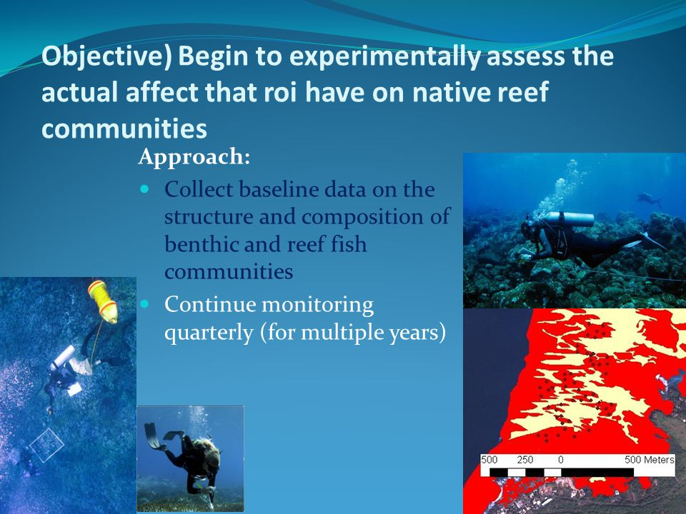 Objective) Begin to experimentally assess the actual affect that roi have on native reef communities Approach: Collect baseline data on the structure and composition of benthic and reef fish communities Continue monitoring quarterly (for multiple years)