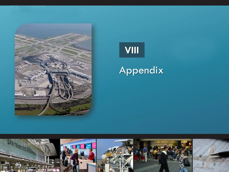Appendix VIII