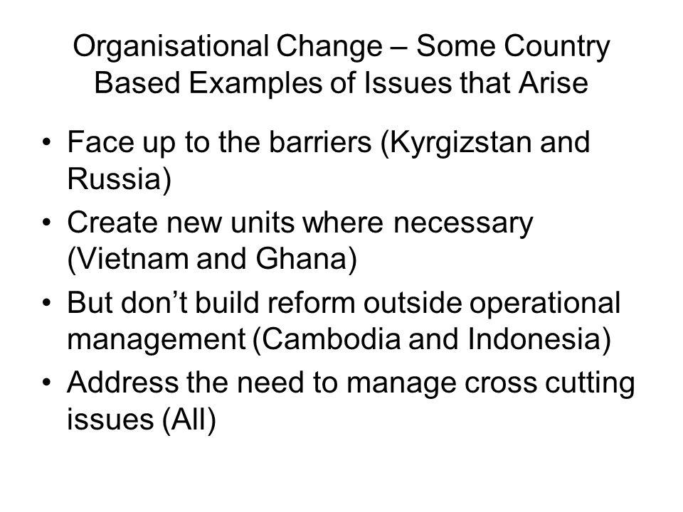 Organisational Change – Some Country Based Examples of Issues that Arise Face up to the barriers (Kyrgizstan and Russia) Create new units where necessary (Vietnam and Ghana) But dont build reform outside operational management (Cambodia and Indonesia) Address the need to manage cross cutting issues (All)