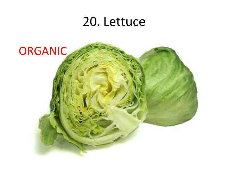 20. Lettuce ORGANIC