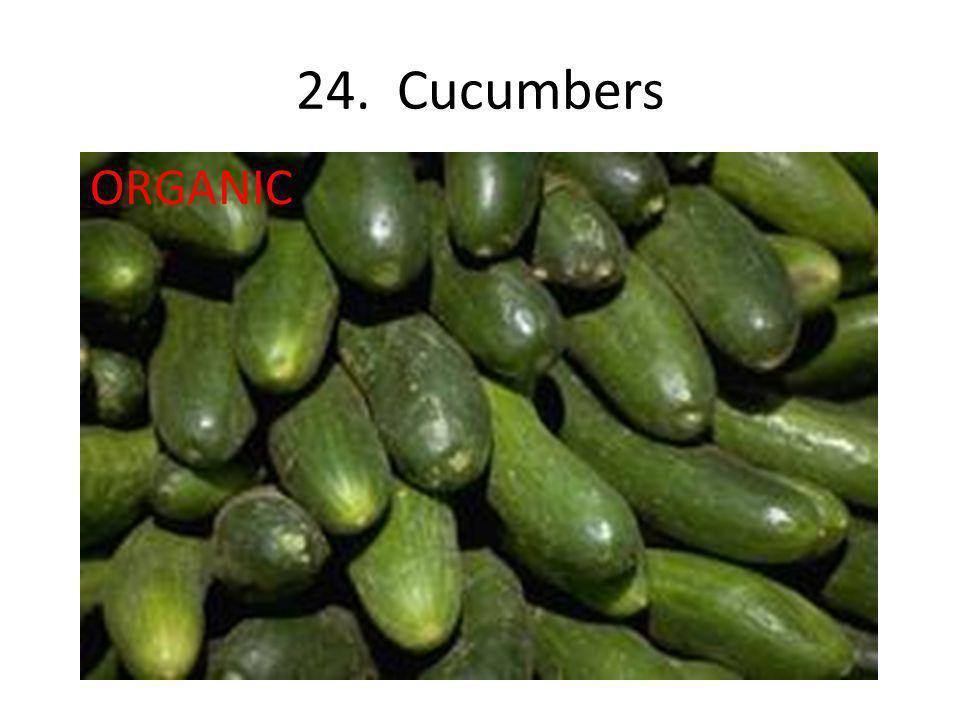 24. Cucumbers ORGANIC