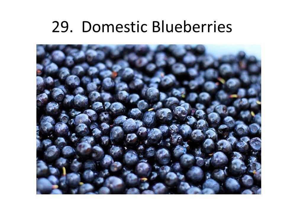 29. Domestic Blueberries