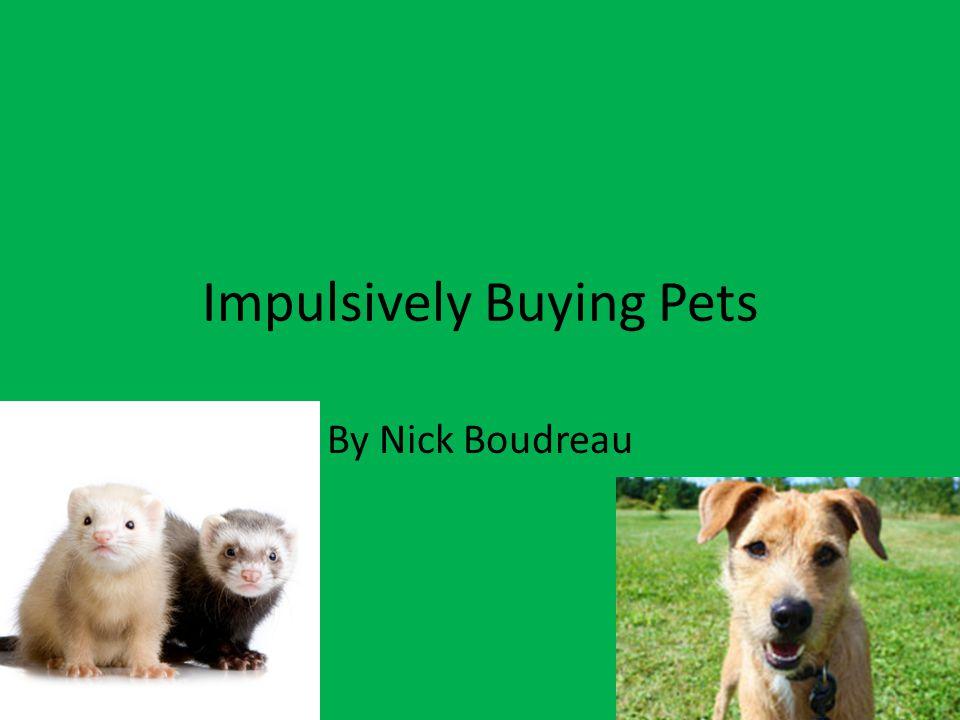 Responsible Pet Buying