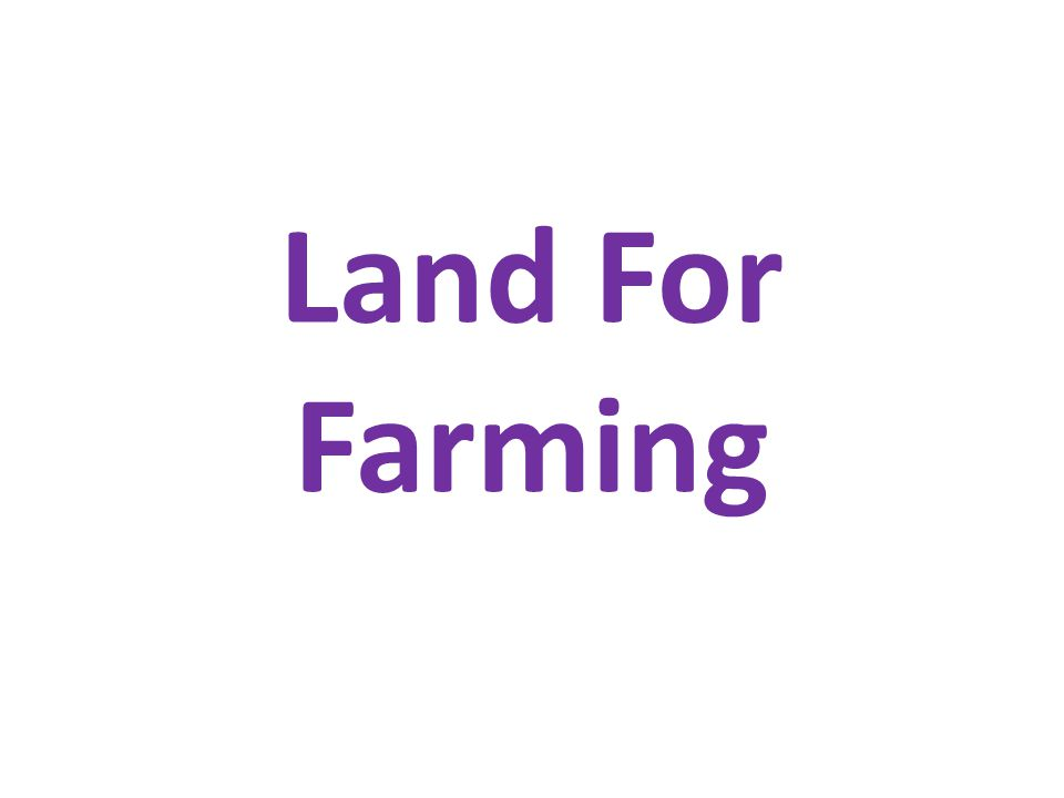 Land For Farming