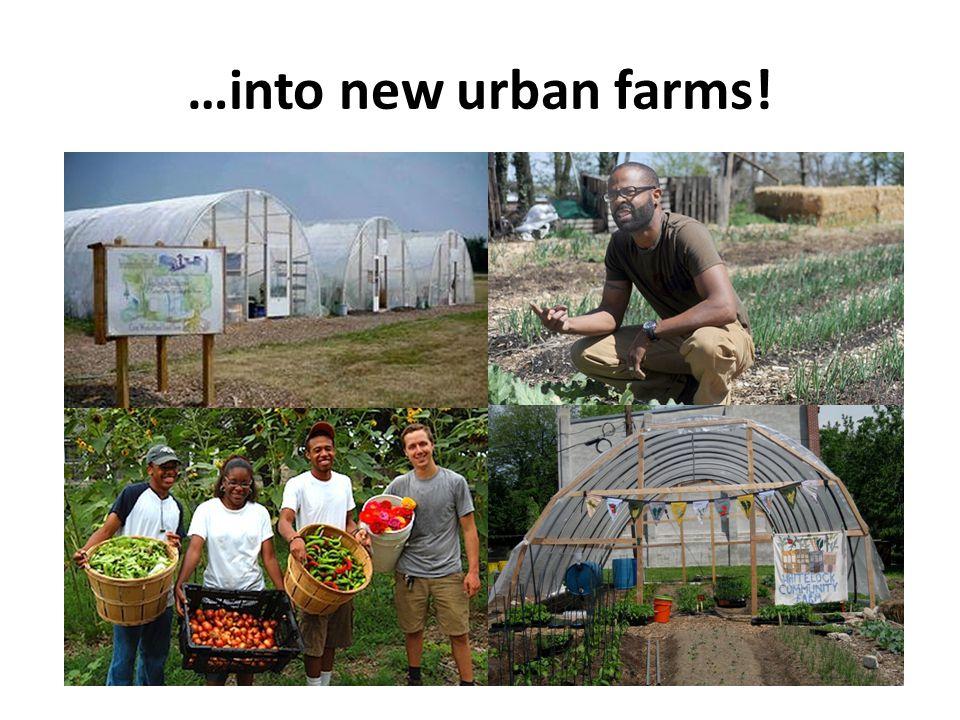 …into new urban farms!