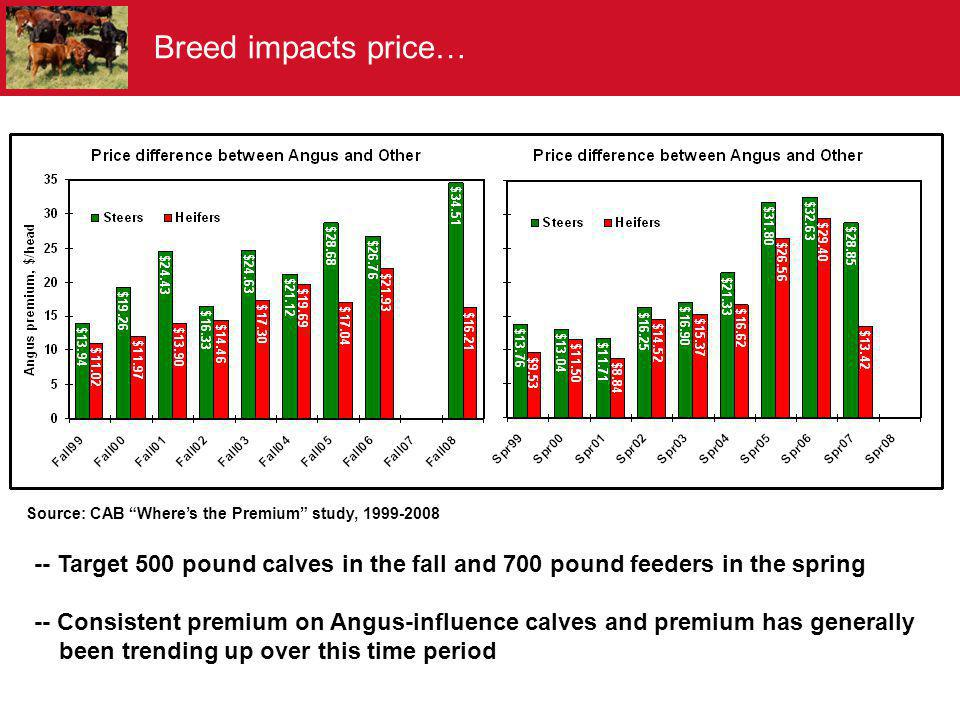 Source: CAB Wheres the Premium study, 1999-2008 -- Target 500 pound calves in the fall and 700 pound feeders in the spring -- Consistent premium on An