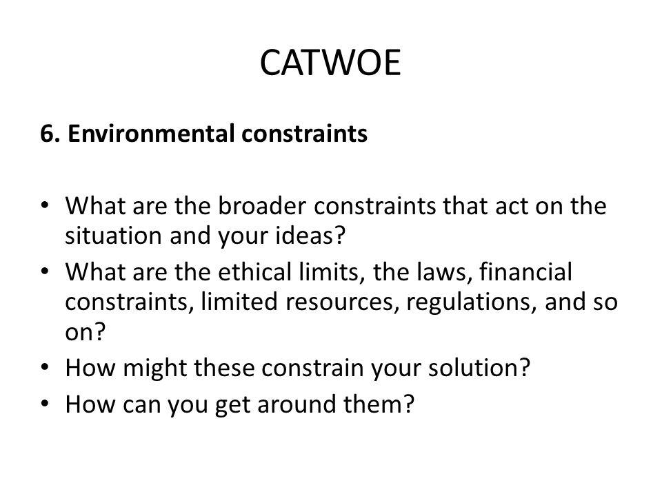 CATWOE 6.