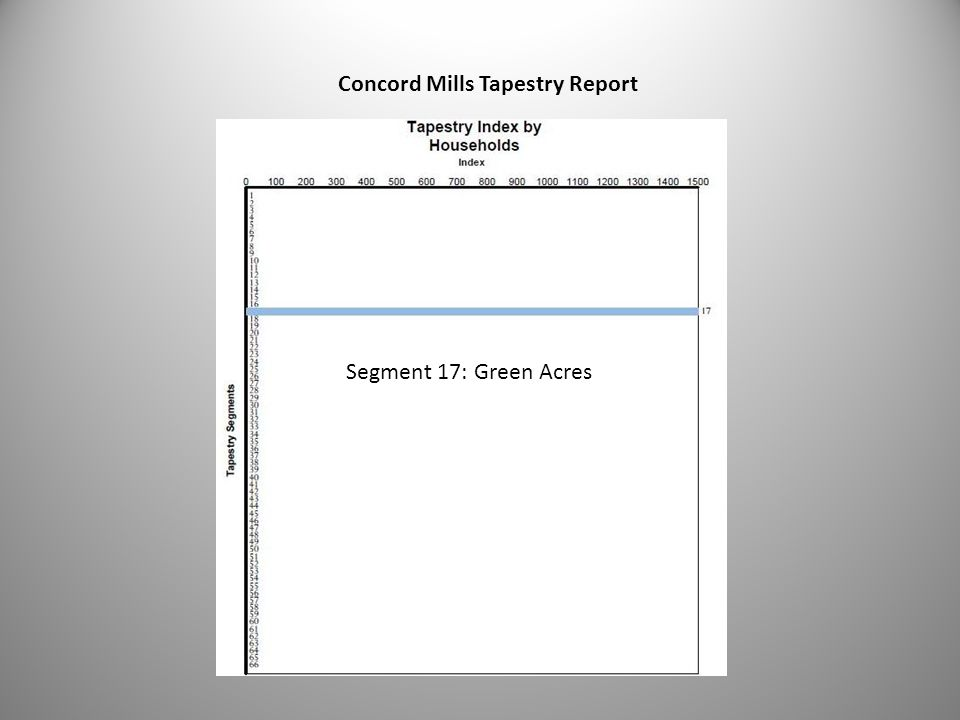 30 Concord Mills Tapestry Report Segment 17: Green Acres
