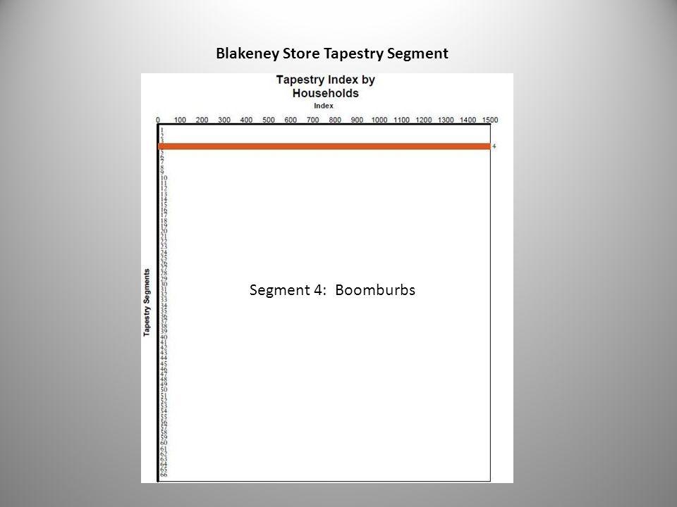 32 Blakeney Store Tapestry Segment Segment 4: Boomburbs