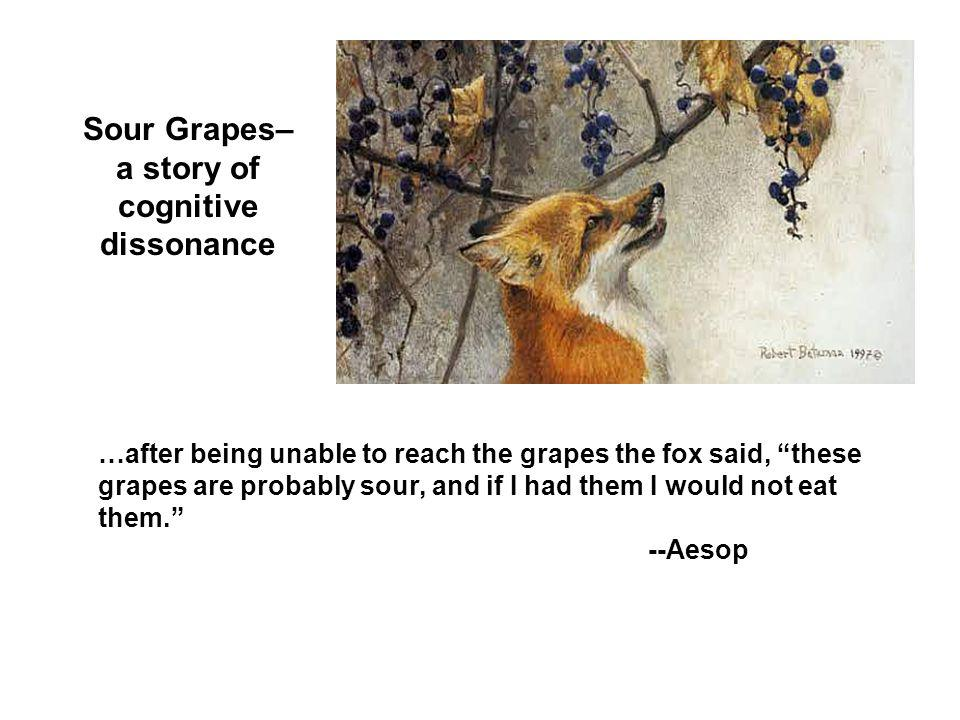 Sour Grapes– a story of cognitive dissonance …after being unable to reach the grapes the fox said, these grapes are probably sour, and if I had them I