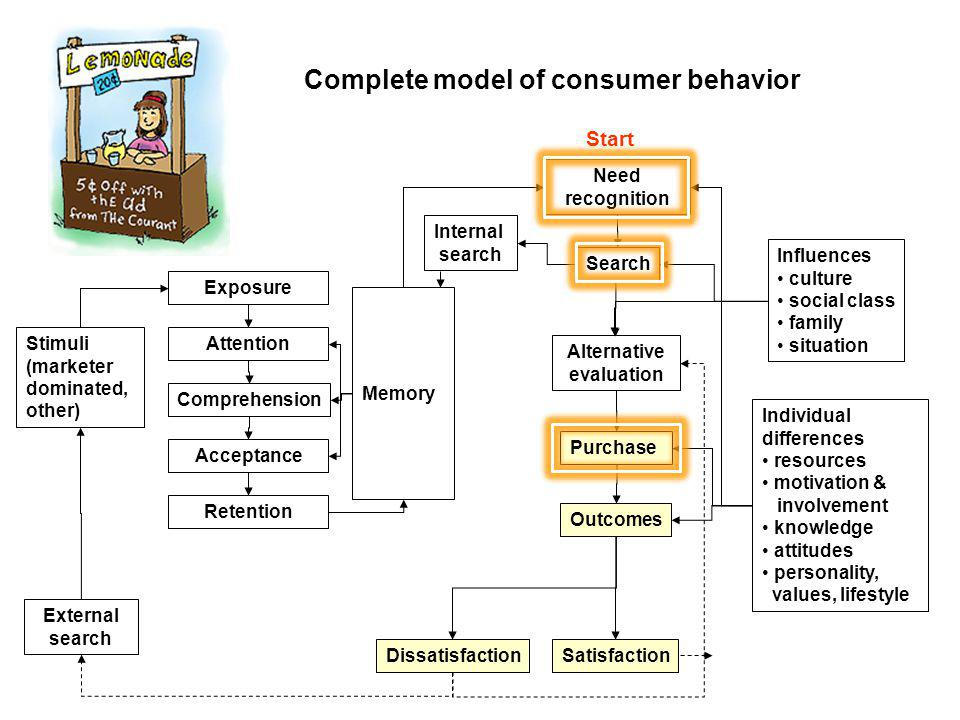 Complete model of consumer behavior Search Need recognition Alternative evaluation Purchase Stimuli (marketer dominated, other) External search Memory