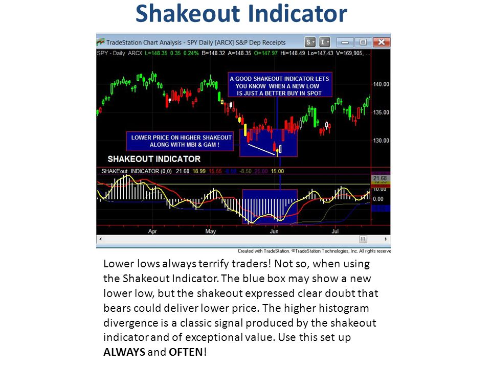 Shakeout Indicator Lower lows always terrify traders! Not so, when using the Shakeout Indicator. The blue box may show a new lower low, but the shakeo