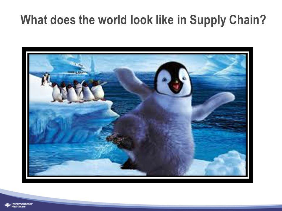 What does the world look like in Supply Chain?