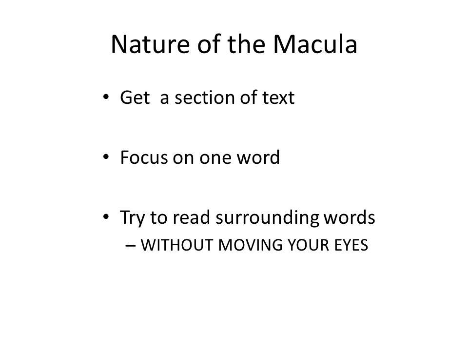 Nature of the Macula Get a section of text Focus on one word Try to read surrounding words – WITHOUT MOVING YOUR EYES