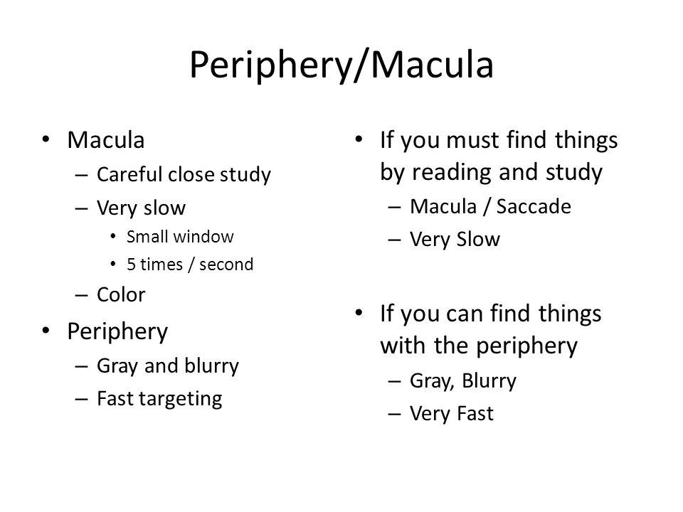 Periphery/Macula Macula – Careful close study – Very slow Small window 5 times / second – Color Periphery – Gray and blurry – Fast targeting If you mu