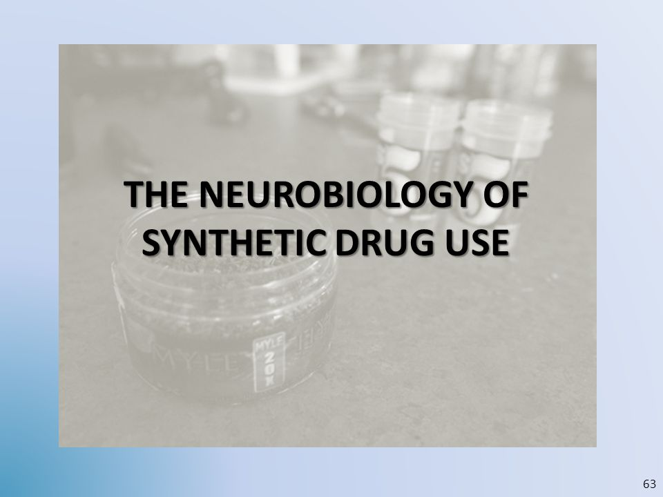 THE NEUROBIOLOGY OF SYNTHETIC DRUG USE 63