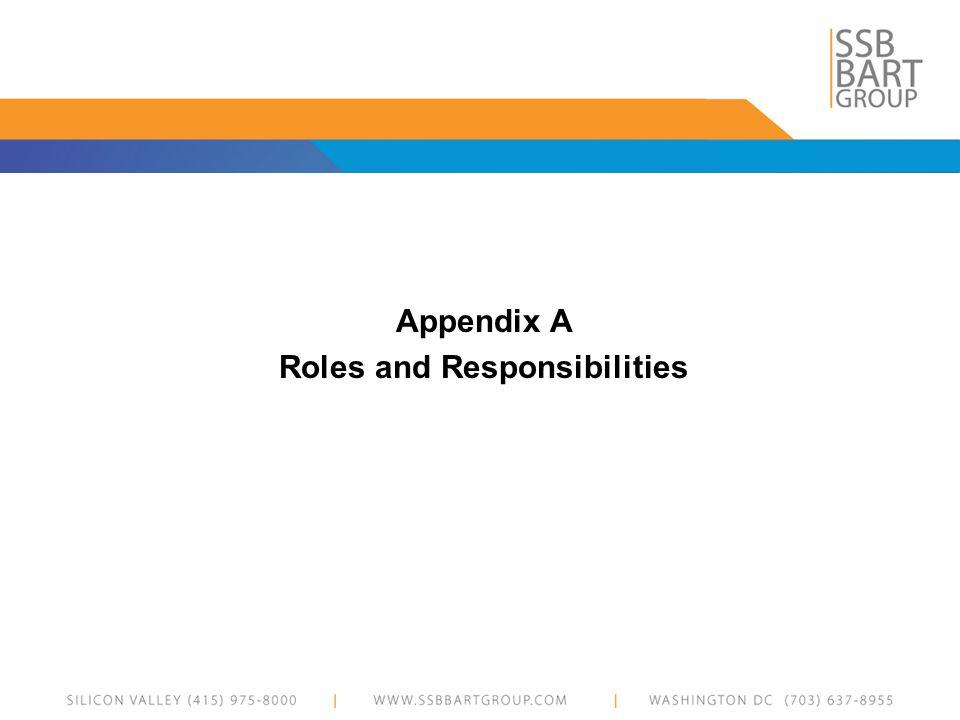 Appendix A Roles and Responsibilities