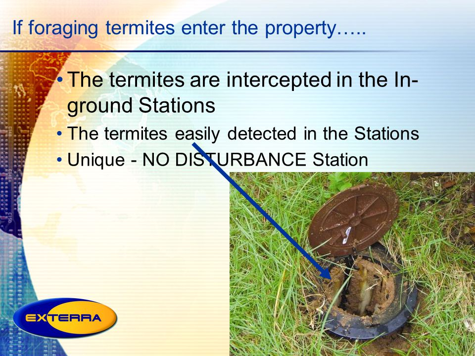 If foraging termites enter the property….. The termites are intercepted in the In- ground Stations The termites easily detected in the Stations Unique