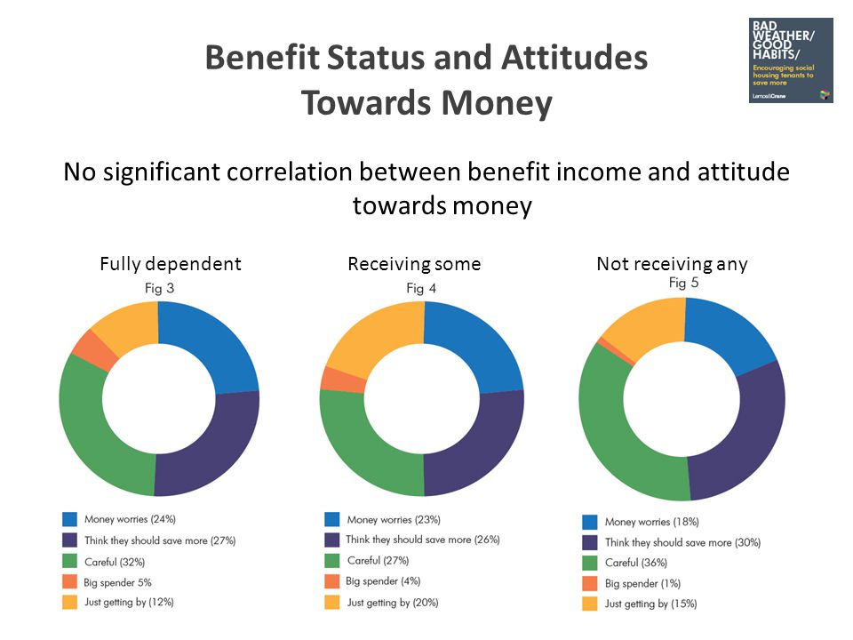 Hobbies and Interests The majority prioritise low cost, high contentment activities 2% listed shopping as among their hobbies 0.5% listed spending money