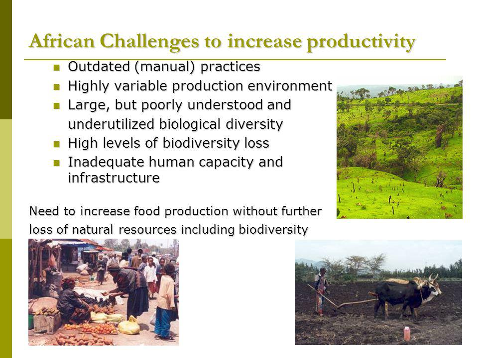 African Challenges to increase productivity Outdated (manual) practices Outdated (manual) practices Highly variable production environment Highly variable production environment Large, but poorly understood and Large, but poorly understood and underutilized biological diversity High levels of biodiversity loss High levels of biodiversity loss Inadequate human capacity and infrastructure Inadequate human capacity and infrastructure Need to increase food production without further loss of natural resources including biodiversity