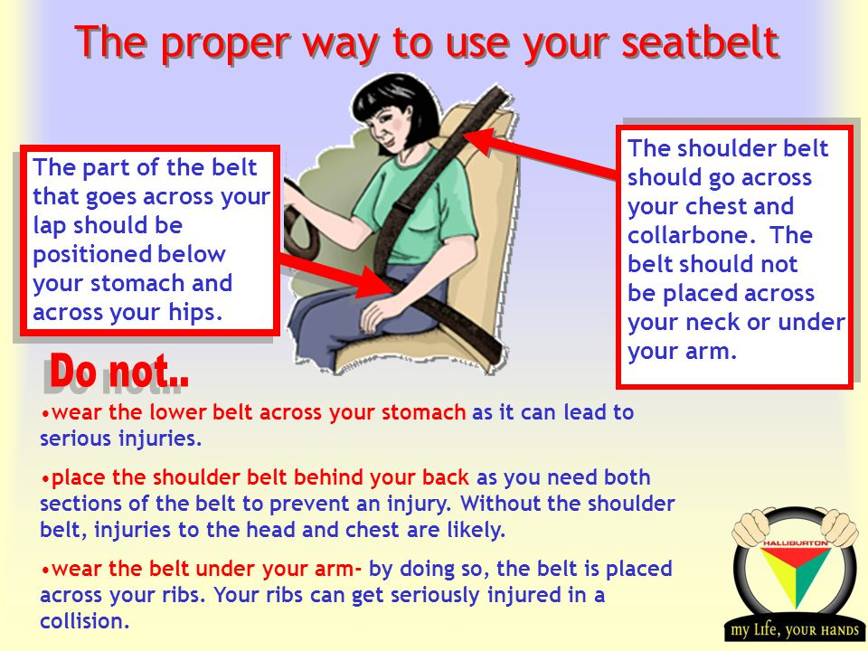 Transportation Tuesday The proper way to use your seatbelt The part of the belt that goes across your lap should be positioned below your stomach and across your hips.