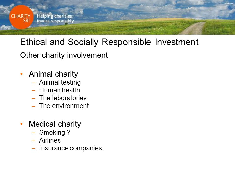 Ethical and Socially Responsible Investment Other charity involvement Animal charity –Animal testing –Human health –The laboratories –The environment