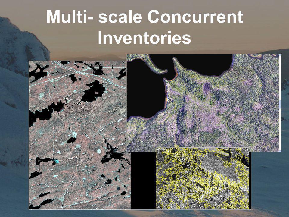 Multi- scale Concurrent Inventories