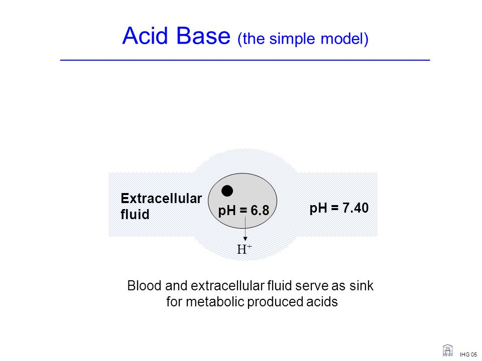 IHG 05 pH = 6.8 Extracellular fluid pH = 7.40 Blood and extracellular fluid serve as sink for metabolic produced acids H+H+ Acid Base (the simple model) _______________________________________________________________________