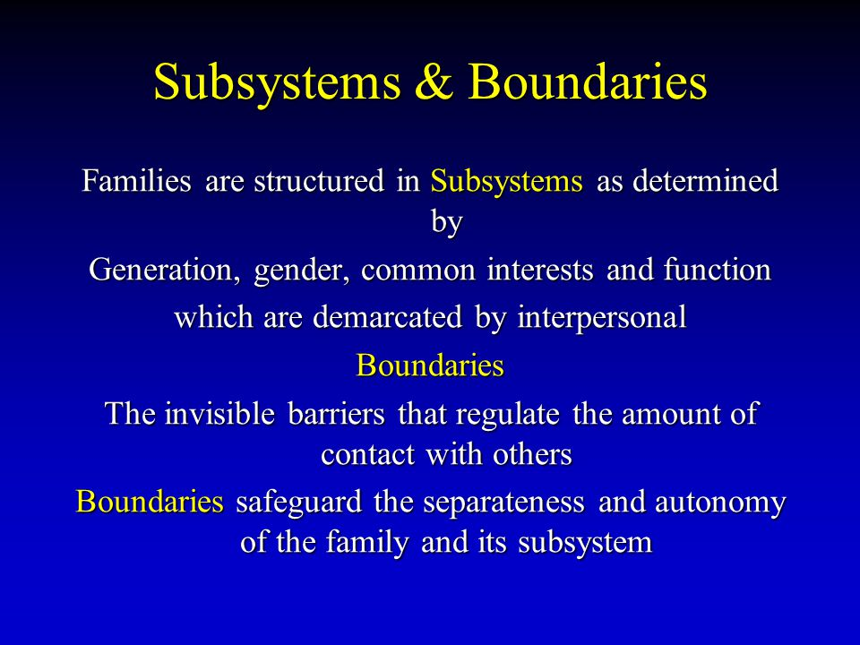 Subsystems & Boundaries Families are structured in Subsystems as determined by Generation, gender, common interests and function which are demarcated