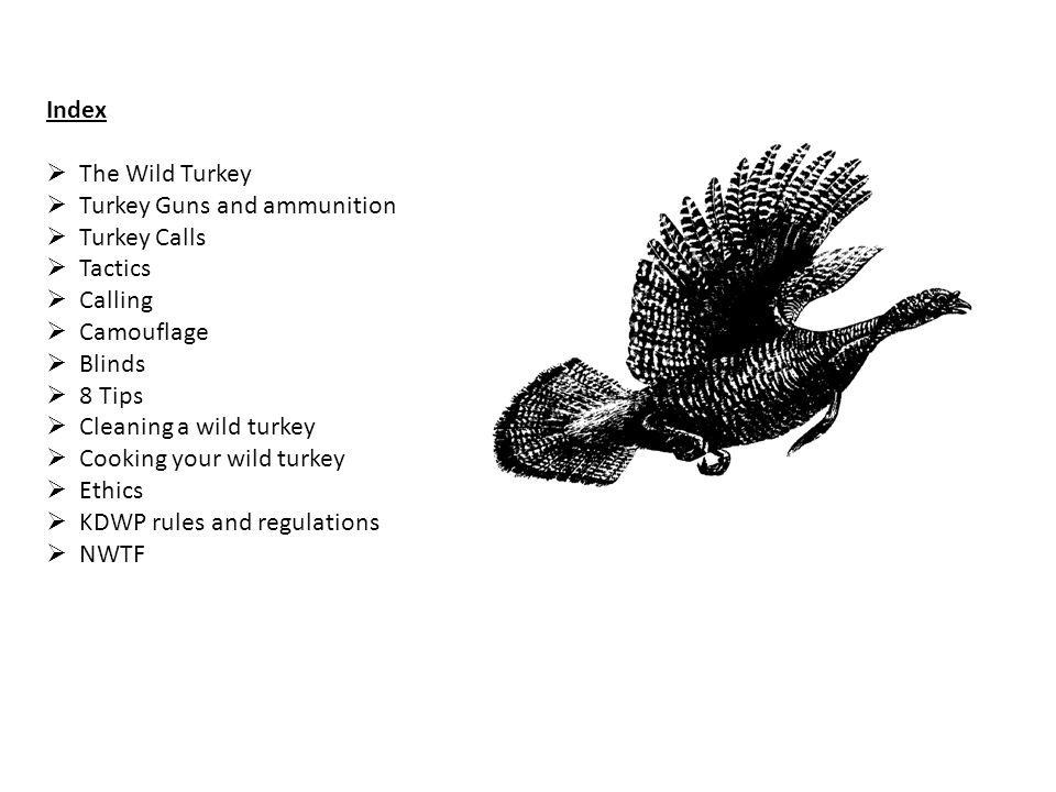 Index The Wild Turkey Turkey Guns and ammunition Turkey Calls Tactics Calling Camouflage Blinds 8 Tips Cleaning a wild turkey Cooking your wild turkey
