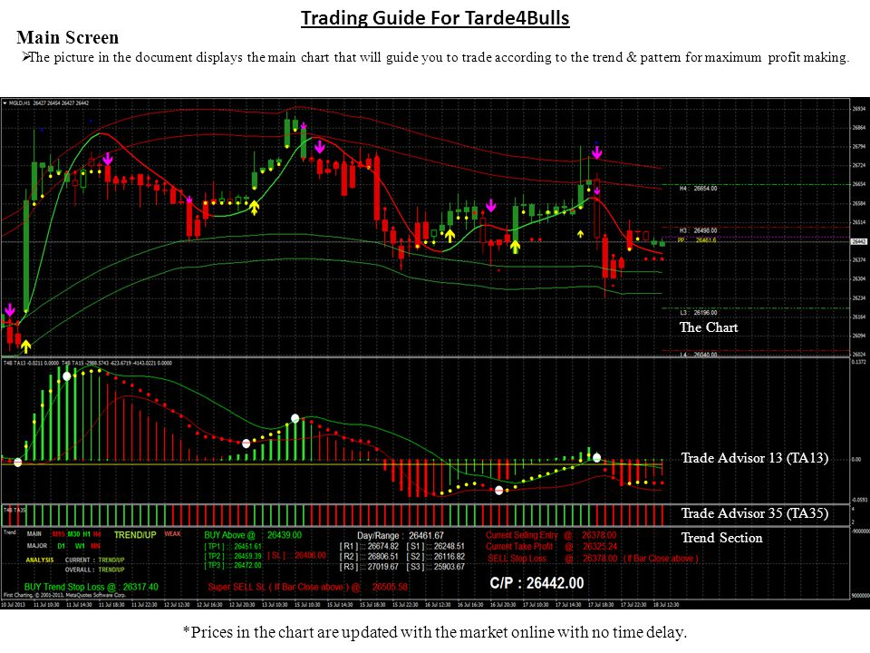 Trading Guide For Tarde4Bulls Main Screen The picture in the document displays the main chart that will guide you to trade according to the trend & pattern for maximum profit making.