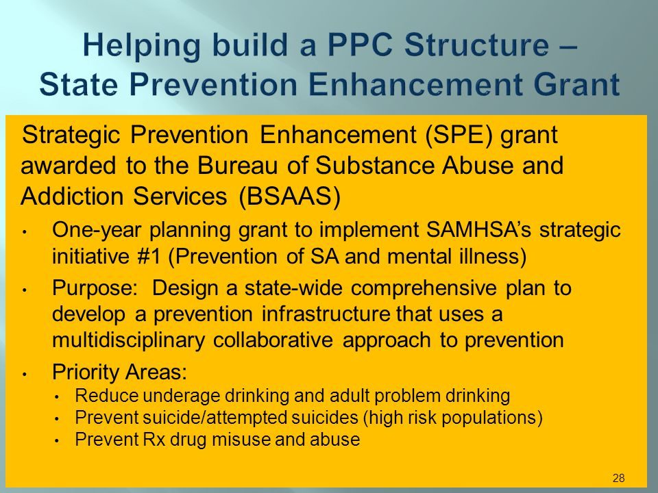 Strategic Prevention Enhancement (SPE) grant awarded to the Bureau of Substance Abuse and Addiction Services (BSAAS) One-year planning grant to implement SAMHSAs strategic initiative #1 (Prevention of SA and mental illness) Purpose: Design a state-wide comprehensive plan to develop a prevention infrastructure that uses a multidisciplinary collaborative approach to prevention Priority Areas: Reduce underage drinking and adult problem drinking Prevent suicide/attempted suicides (high risk populations) Prevent Rx drug misuse and abuse 28