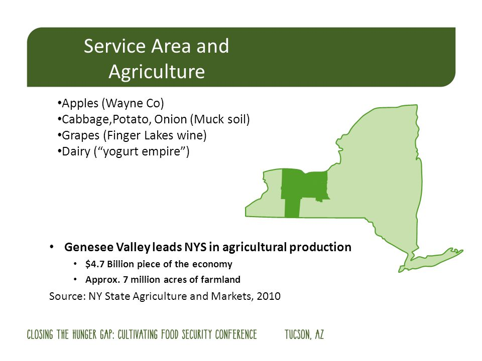 Service Area and Agriculture Apples (Wayne Co) Cabbage,Potato, Onion (Muck soil) Grapes (Finger Lakes wine) Dairy (yogurt empire) Genesee Valley leads NYS in agricultural production $4.7 Billion piece of the economy Approx.