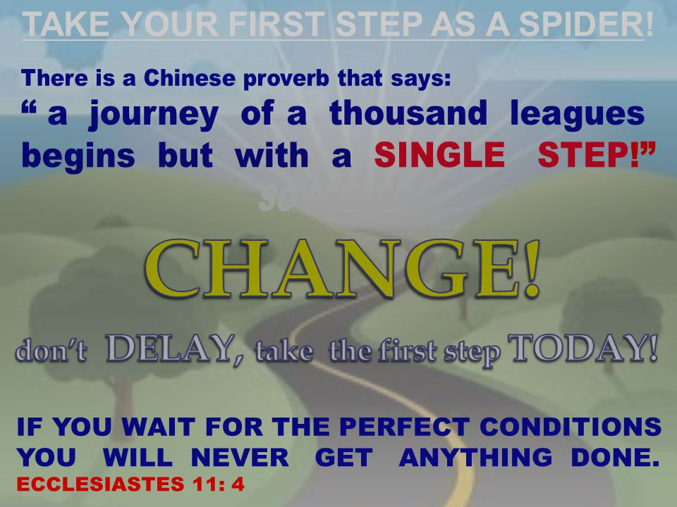 TAKE YOUR FIRST STEP AS A SPIDER!
