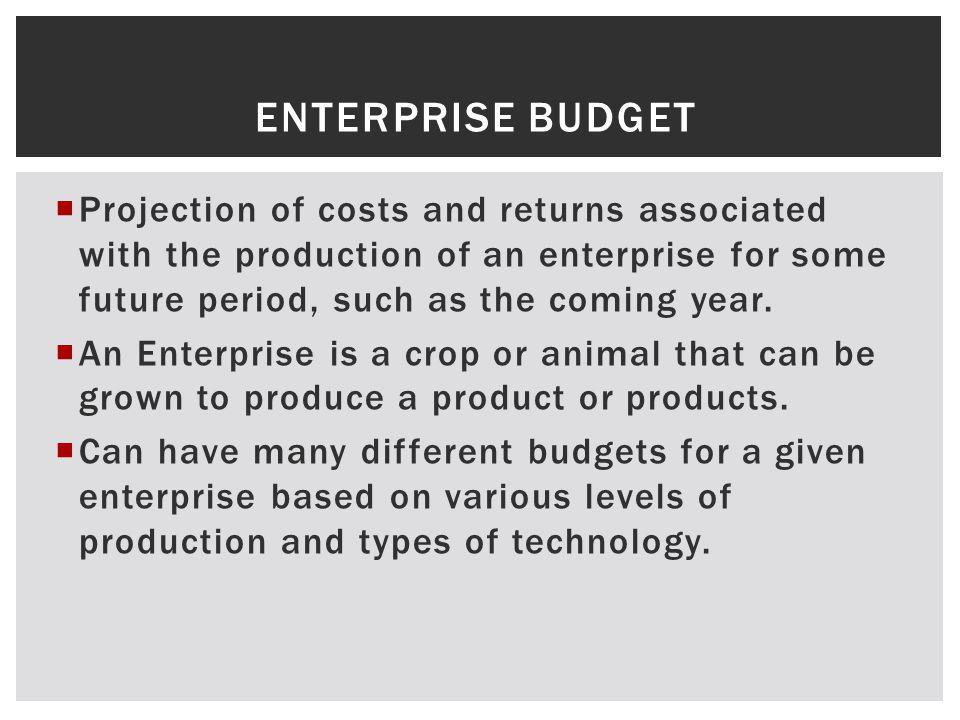 ENTERPRISE BUDGET Projection of costs and returns associated with the production of an enterprise for some future period, such as the coming year.
